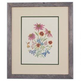 Texas Wildflowers Framed Prints