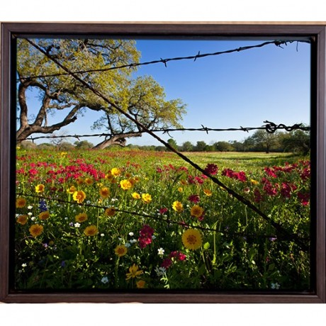 Wildflowers, Framed Photograph